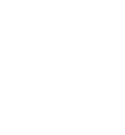 ontranslation-iso-aneti
